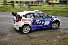 Birr Stages Rally 2019