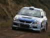 024 Tipp Forestry 2011