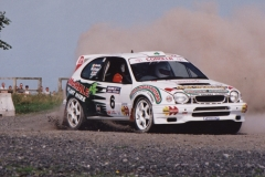 World Rally Masters 2001